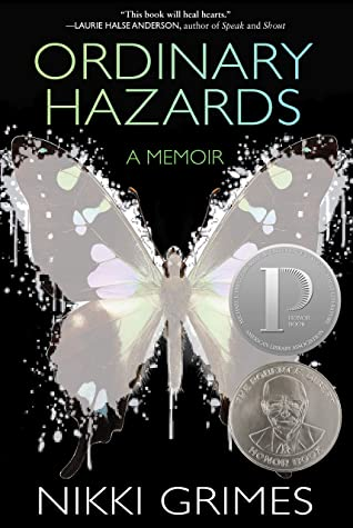 Book cover: Ordinary Hazards